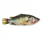 Deshi Meni Fish (মেনি মাছ)
