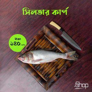 silver-carp